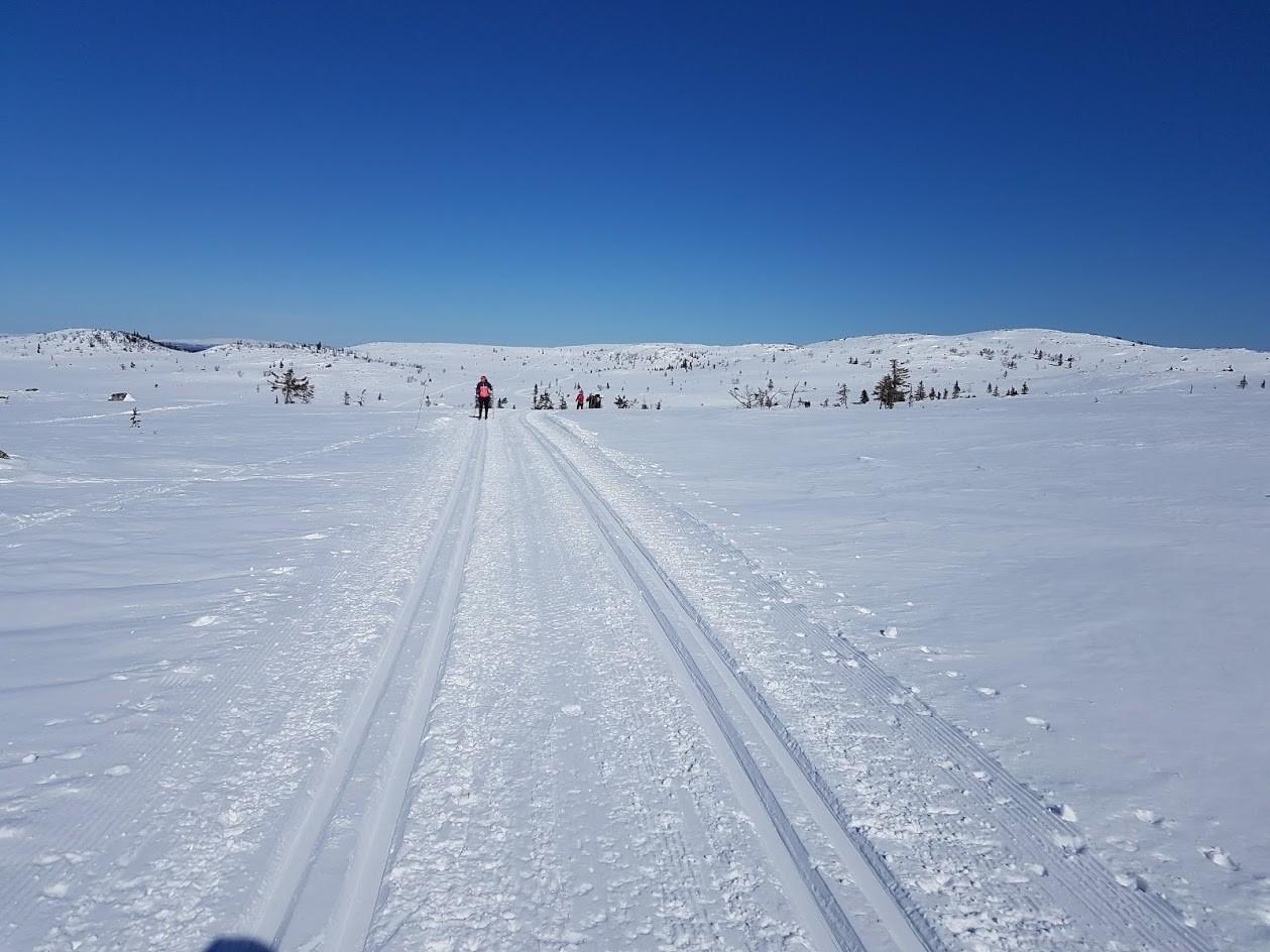 Hedalen løypelag kjører et omfattende løypenett i Hedalsfjella. Foto: Arne Heimestøl