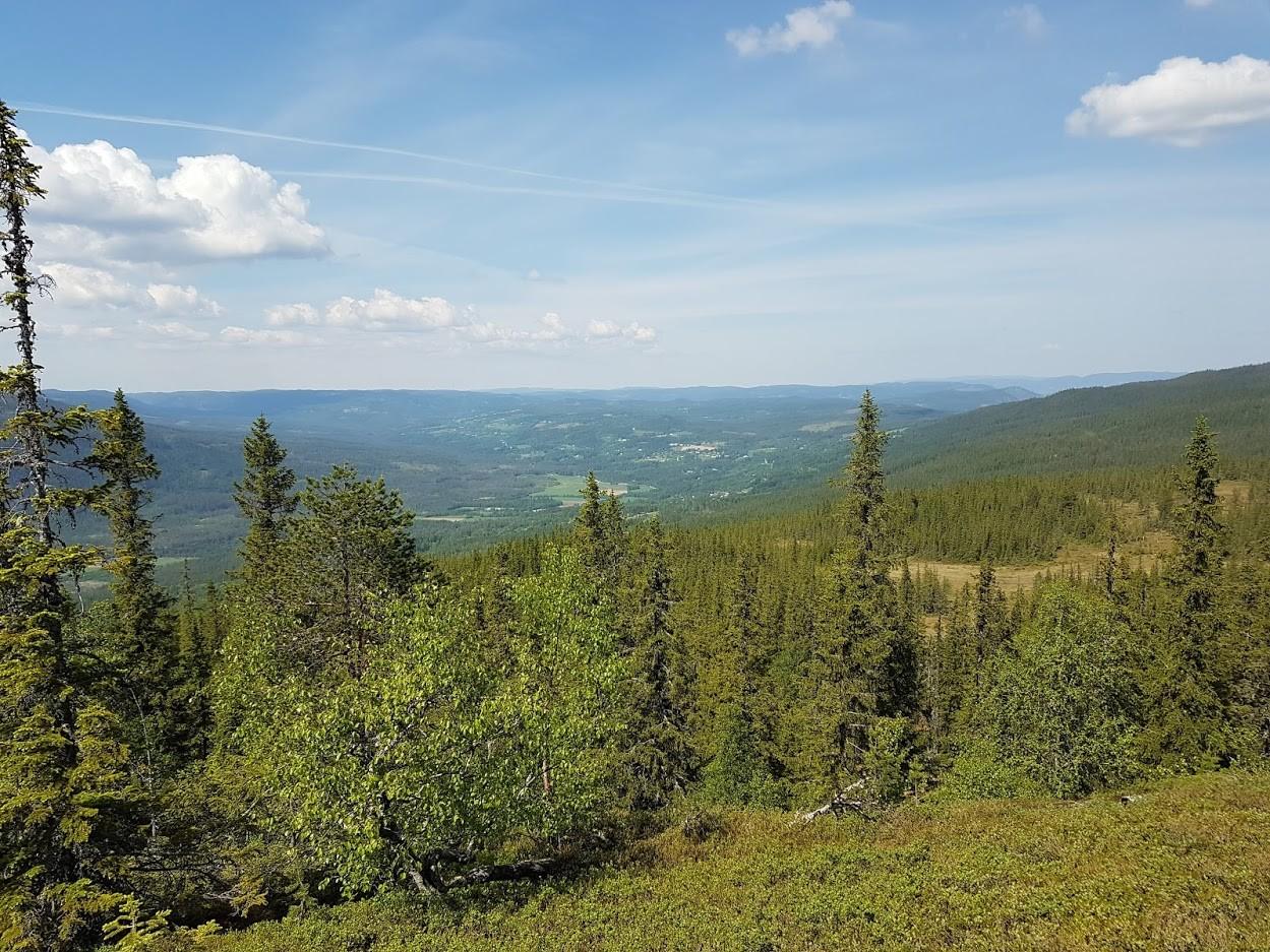 Utsikt mot nord