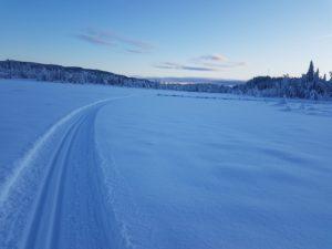 Skiløypa fra Jevnlismyra. Foto: Arne Heimestøl