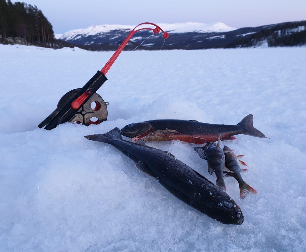Isfiske er en populær aktivitet.