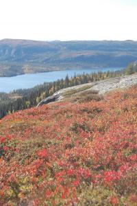 Fra høgdefjell og ned mot Strøen. Foto: Tor Ola Skogstad