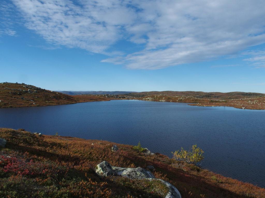 Foto: Helge Nordby