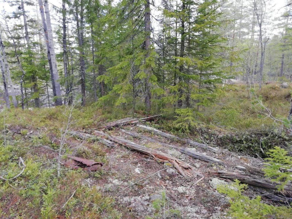 Minne om ei bu for brøtningskara og andre skogsfolk