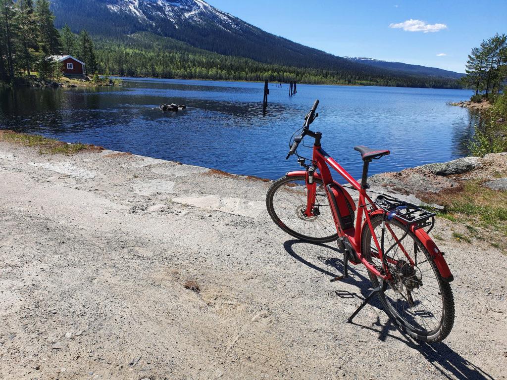 Sykkeltur i Vassfaret. Foto: Arne Heimestøl