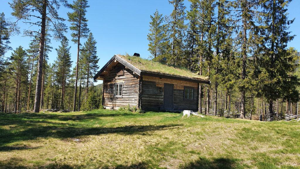 Skrukkefyllhaugen. Foto: Arne Heimestøl