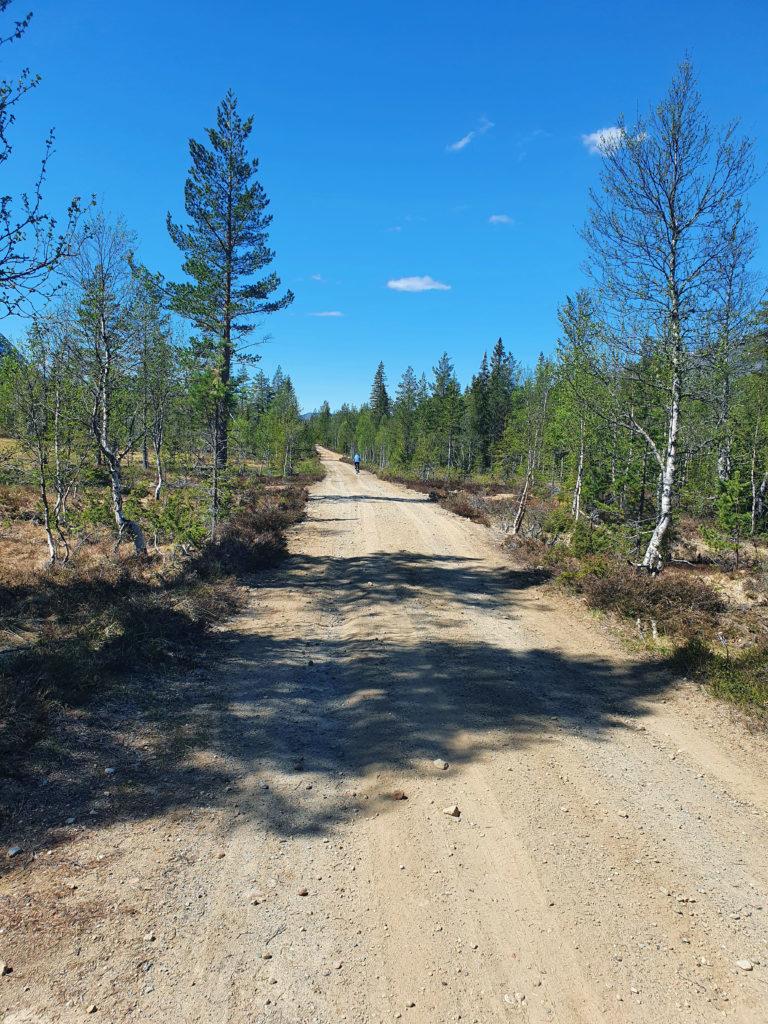 Prøv gjerne vegen som går på Vestsida av Aurdøla. Denne vegen går helt til Aurdalsfjorden. Foto: Arne Heimestøl