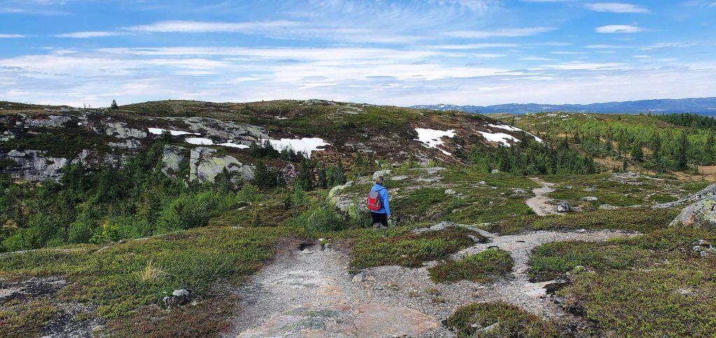 På vei mot Høgdefjell