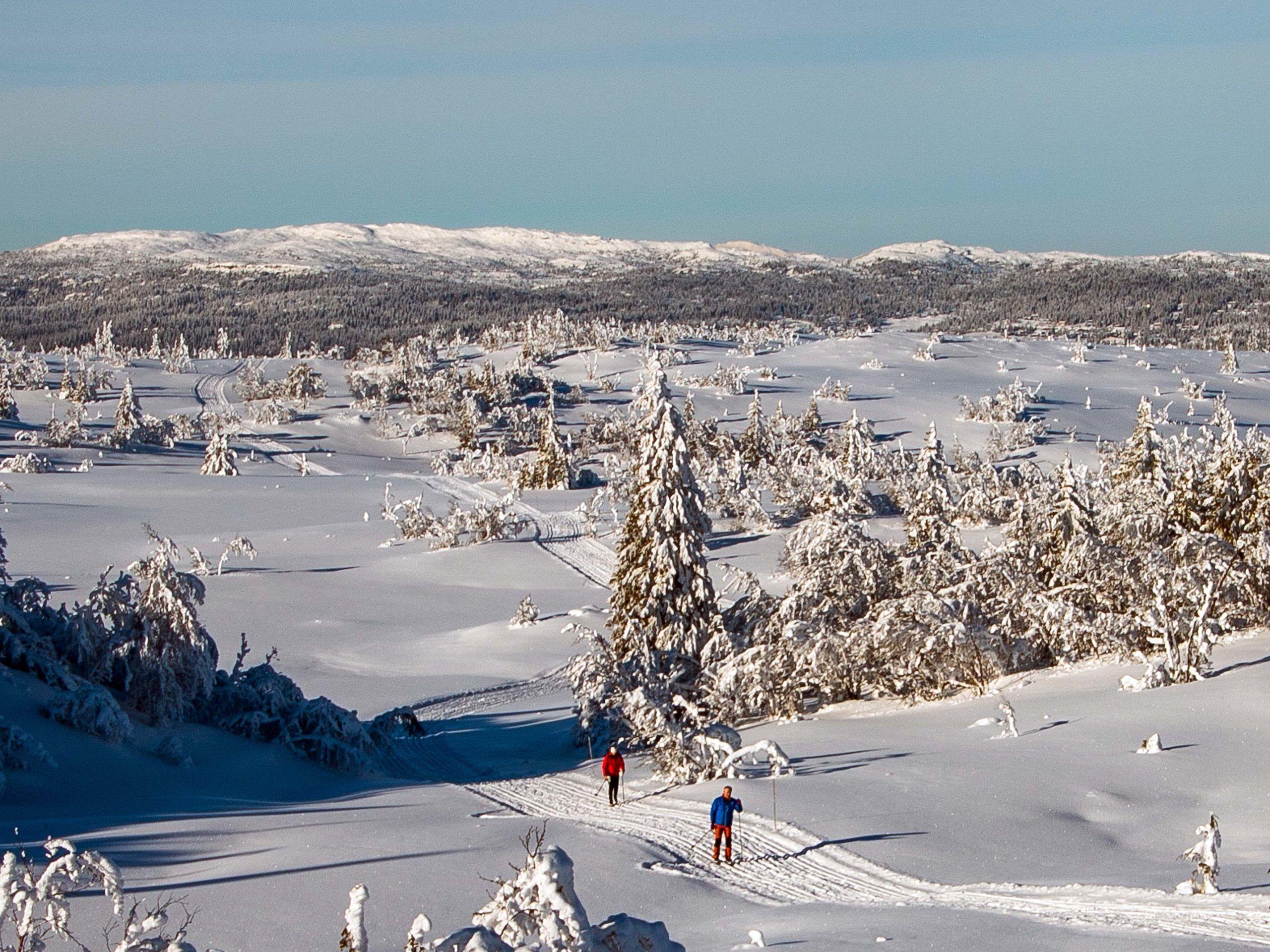 Utsikt fra Høgdefjell mot utbyggingsopmrådet