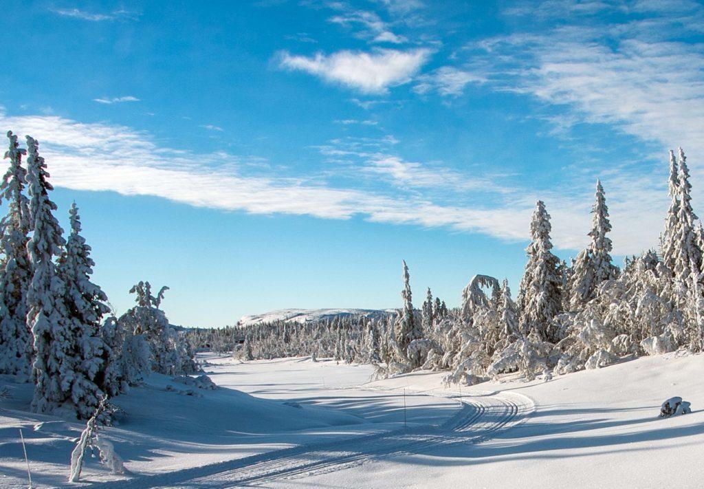 Teinvassåsen er et flott utgangspunkt for skiturer