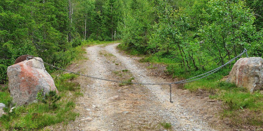 Her starter skogsbilvegen du kan følge nesten helt opp til de to toppene.