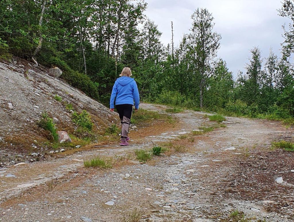 Grei skogsbilveg med jevn stigning før det flater mer ut når du nærmer deg toppen.