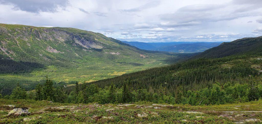Utsikt mot Hedalen