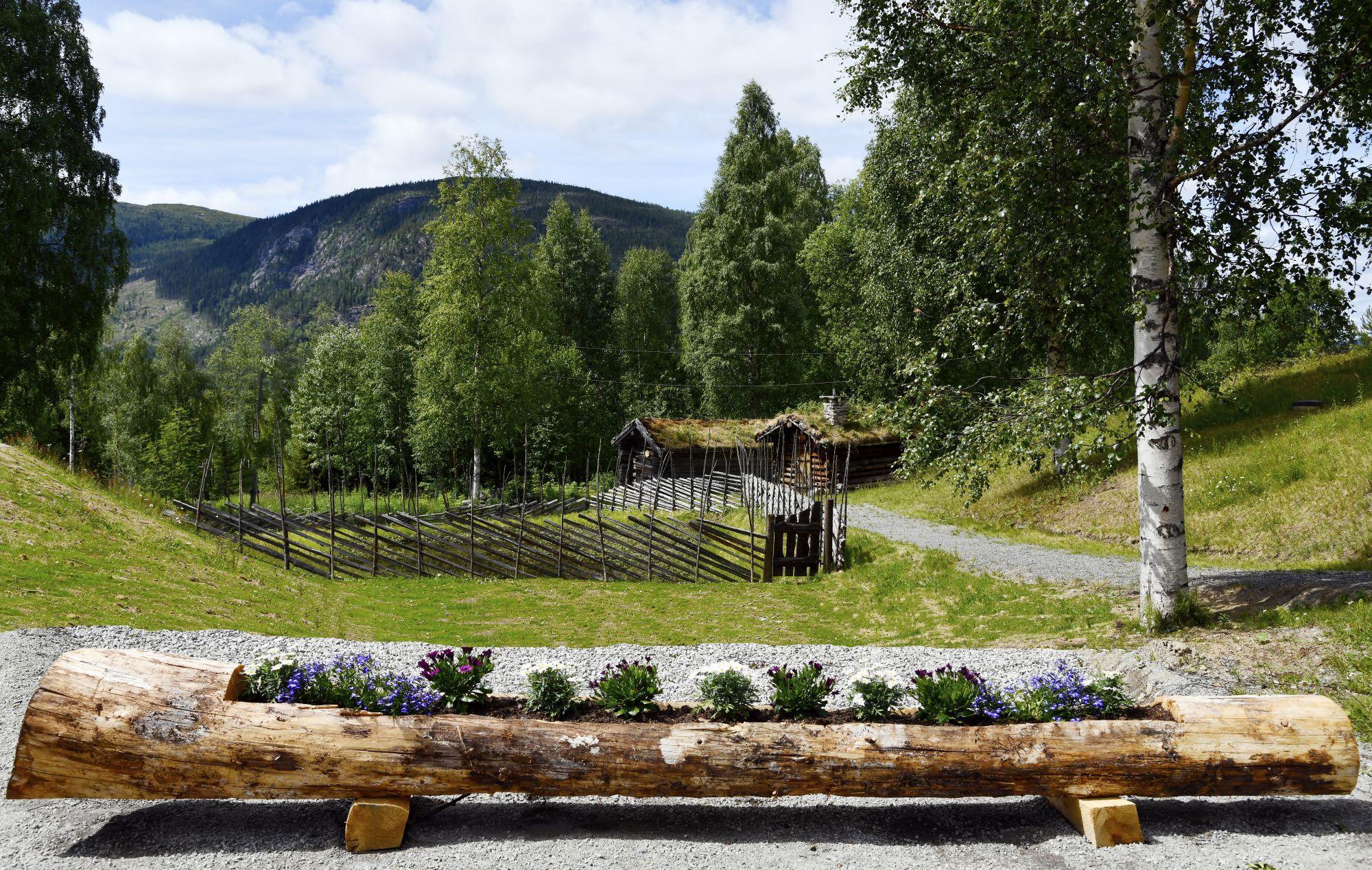 BAutahaugen samlinger. Foto: Arne G. Perlestenbakken