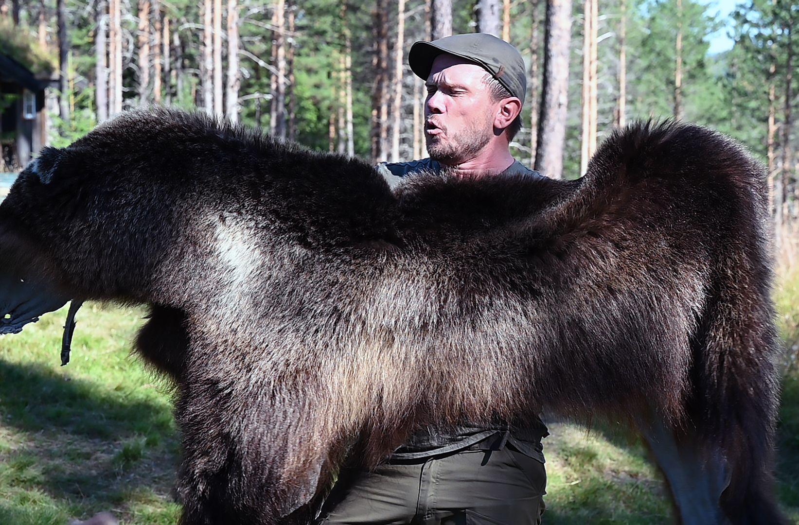 Bjørn Johansen fra Besøkssenter for rovdyr i Flå. Foto: Arne G. Perlestenbakken