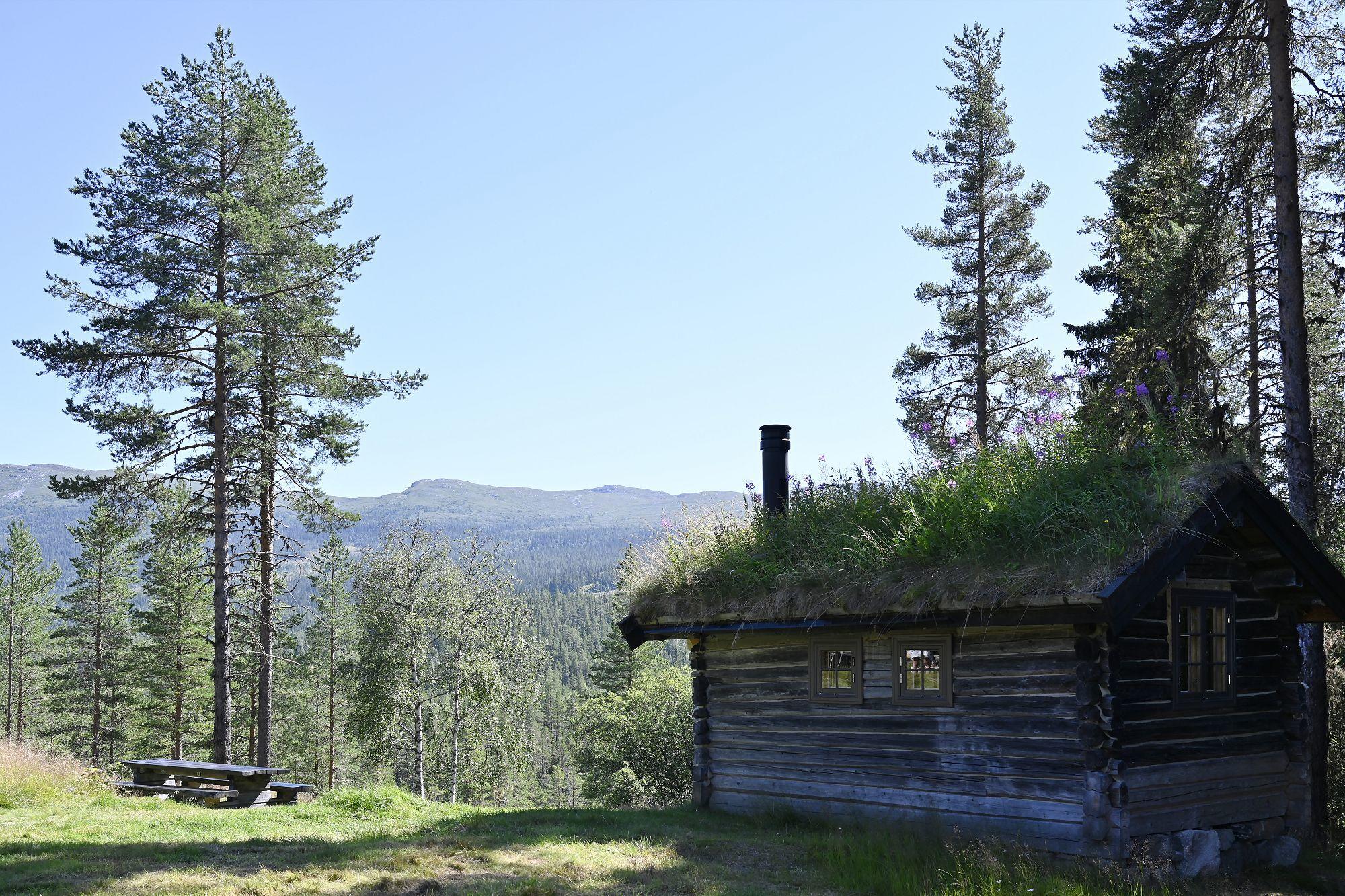 Skrukkefyllhaugen. Foto: Arne G. Perlestenbakken
