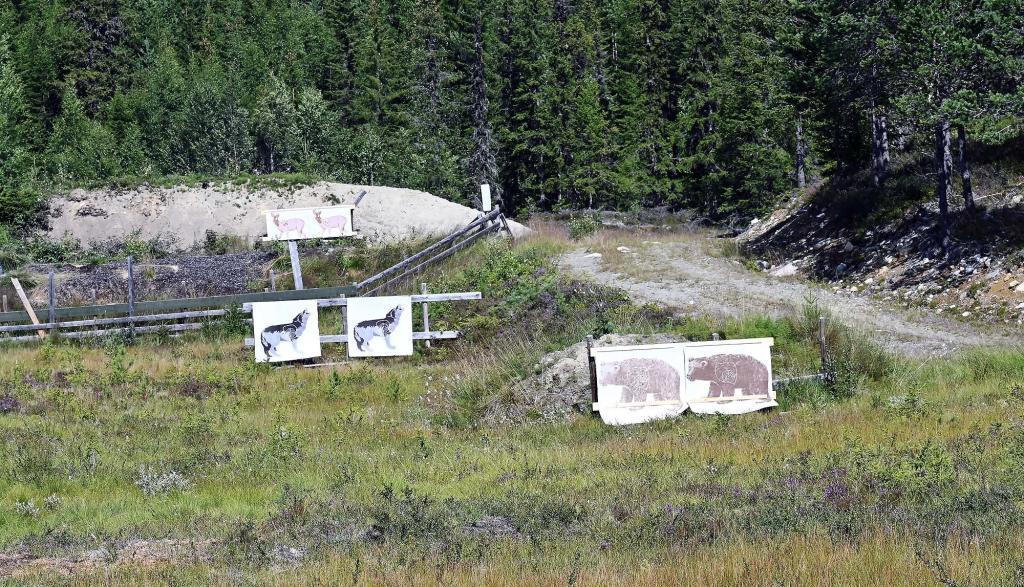 Kursdeltakerne må øve på å skyte på ulike typer vilt. Foto: Arne G. Perlestenbakken