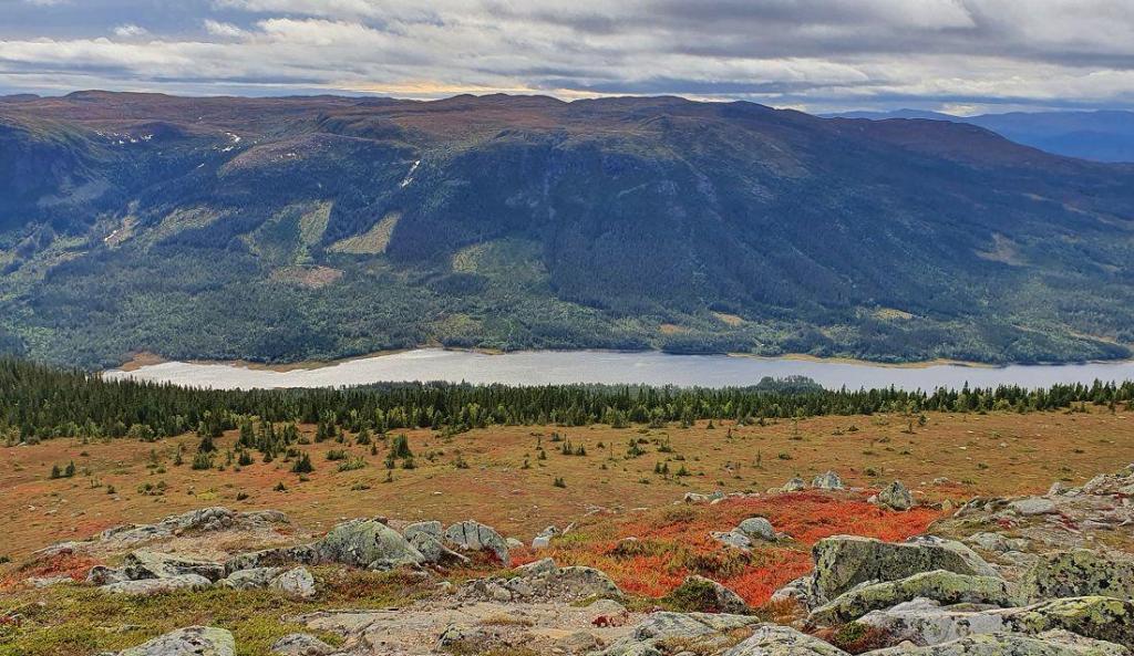 Utsikt fra Seterknatten mot Aurdalsfjorden