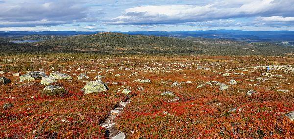 Utsikt mot Busuvatnet og Fledda