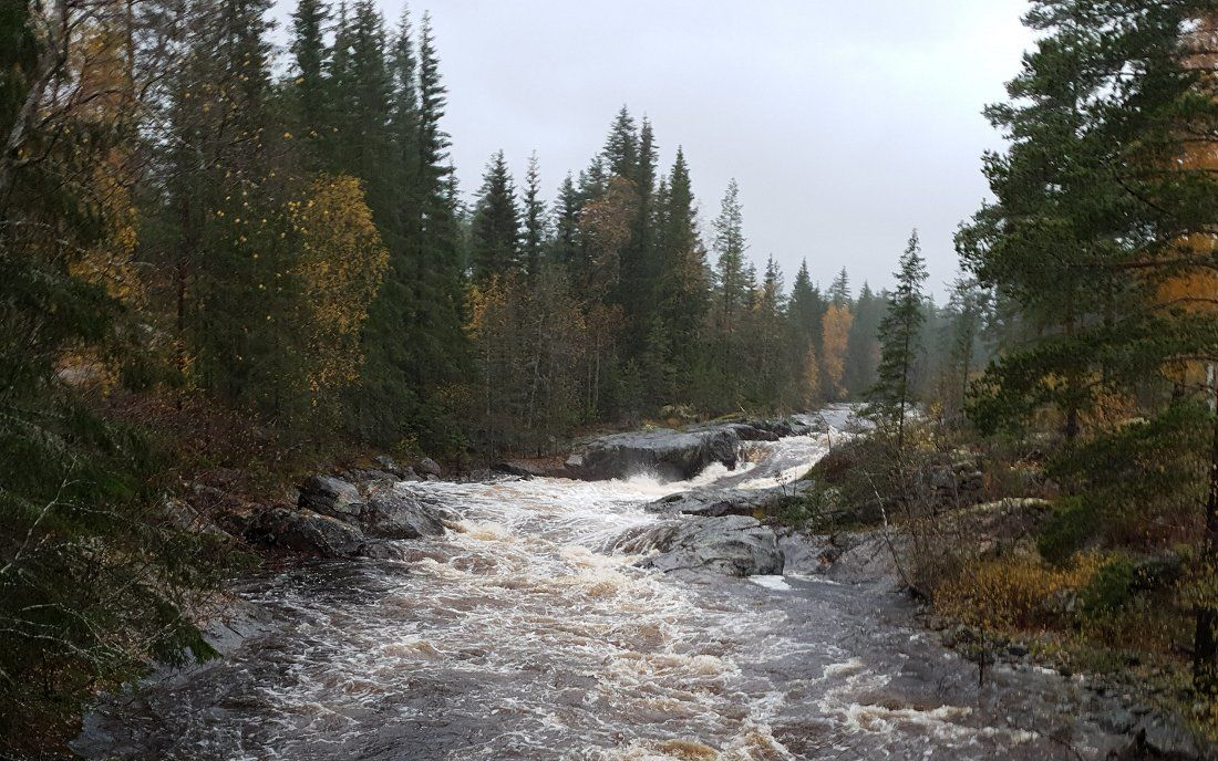 Kraftig regn i Hedalen søndag