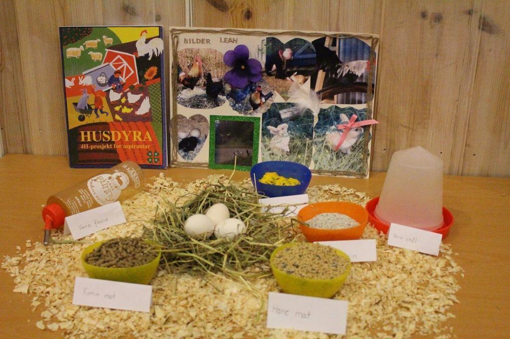 Høstfest i 4H med utstillinger