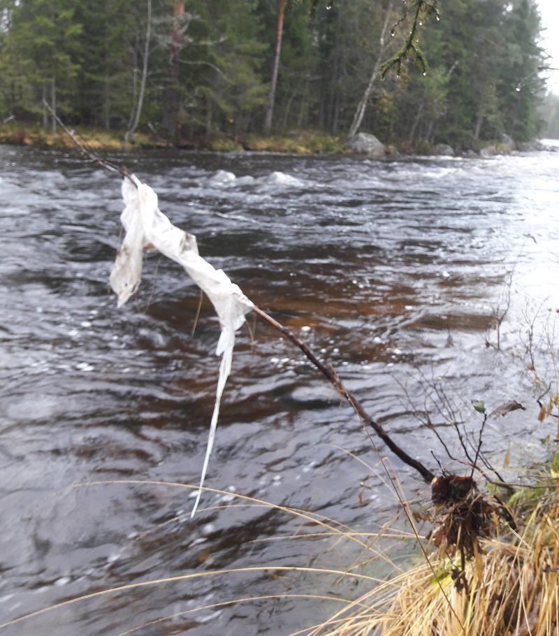 Plastsøppel langs elva
