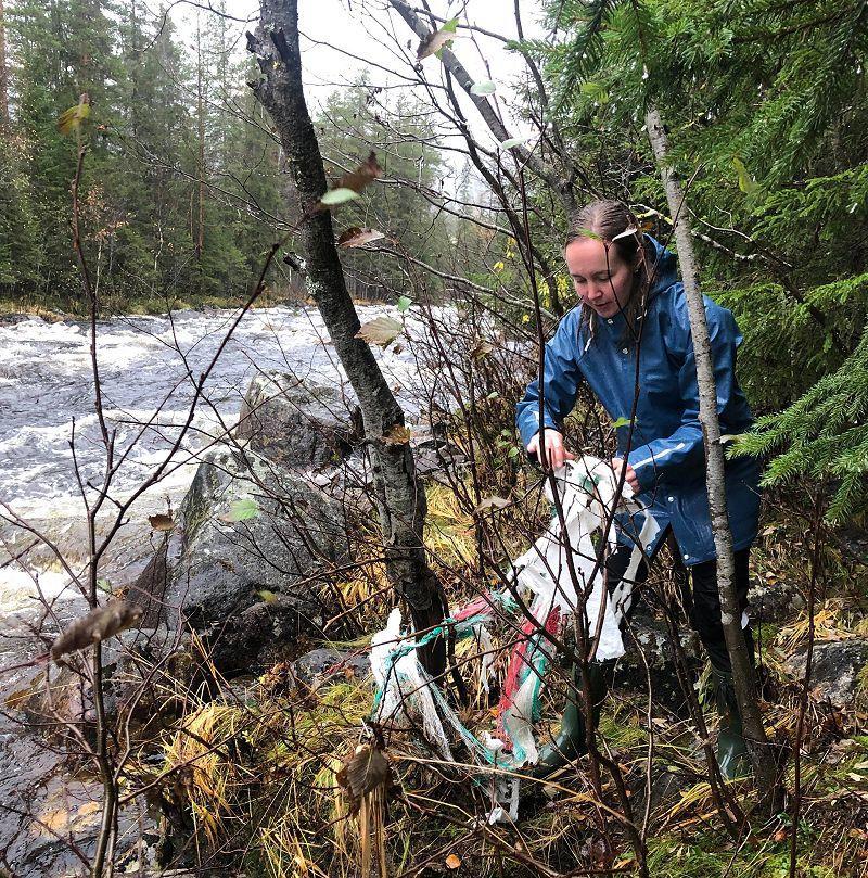 Plastsøppel fester seg til skogen langs elevbredda