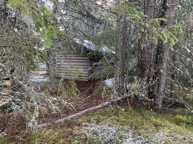 Gjengrodd løe ved Stormyra. Foto: Nils E. Bjerkestrand