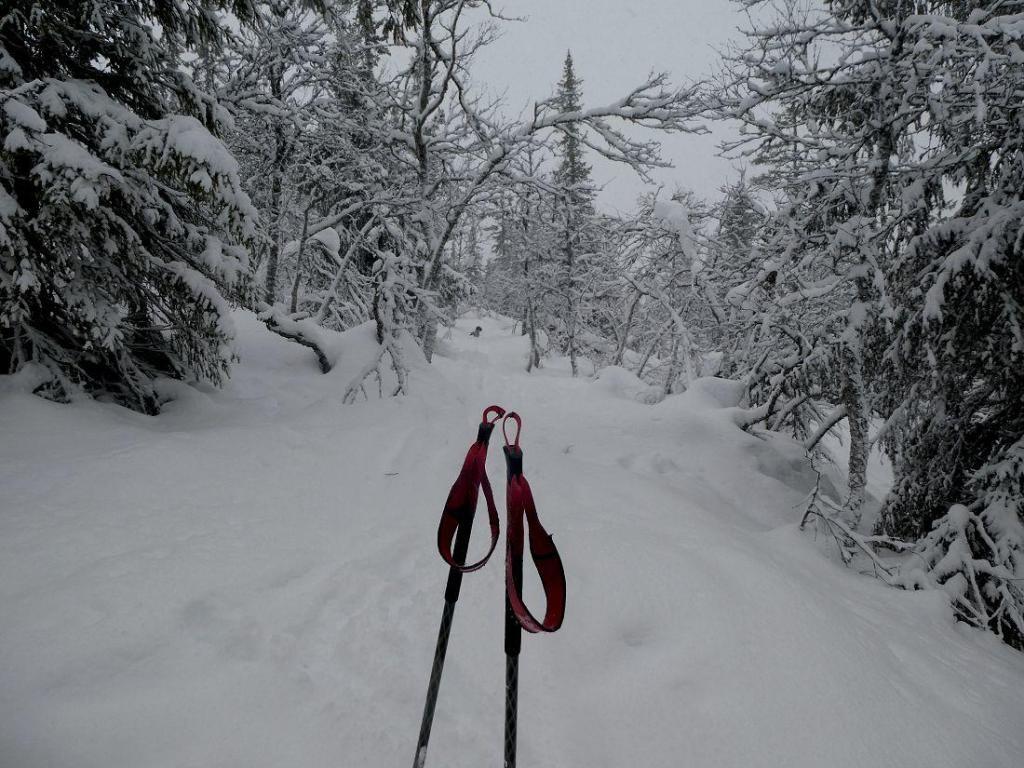 Bra med snø i fjellet. Foto: Line Wermundsen Mork