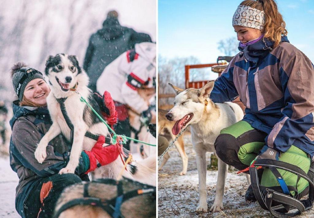 Skole som tilbyr Hundekjøring