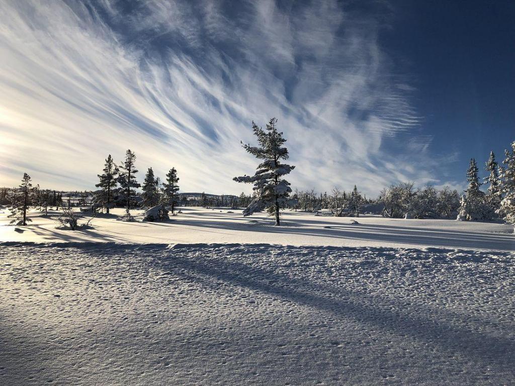 Gode forhold for skigåing i Fledda og Hedalsfjella. Foto: Harald Arne Haugen