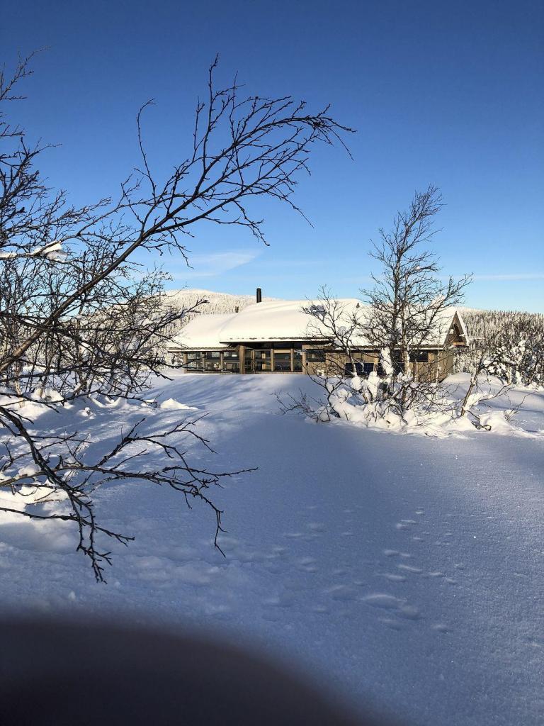 Ferdig hytte i Tubbegarden. Foto: Harald Arne Haugen