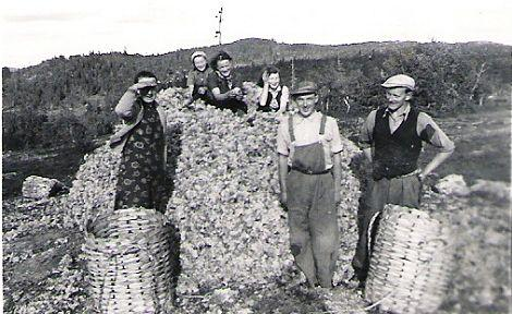 Mosesanking rundt 1940