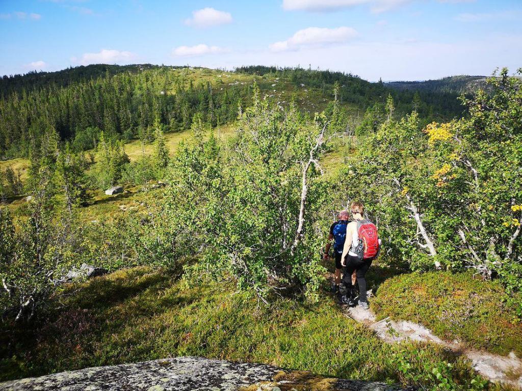 Fin tursti fra Søbekkseter mot Rennsjøen. Foto: Dagfinn Heimestøl