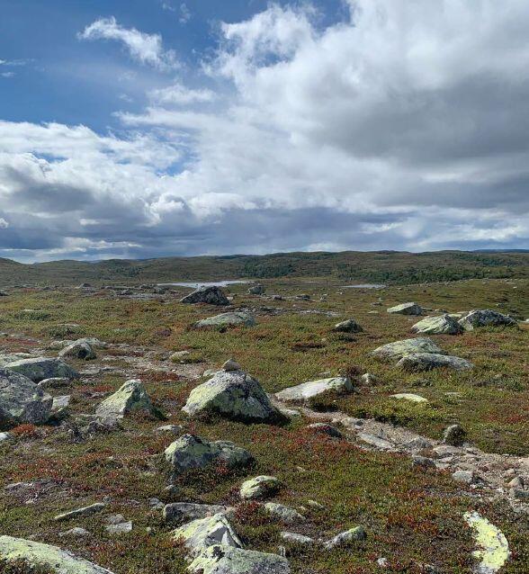 I Hedalsfjella er det flere merkede stier