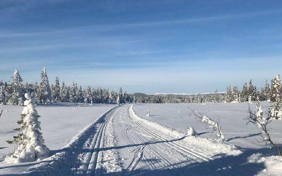 Flotte skiløyper i Hedalsfjella