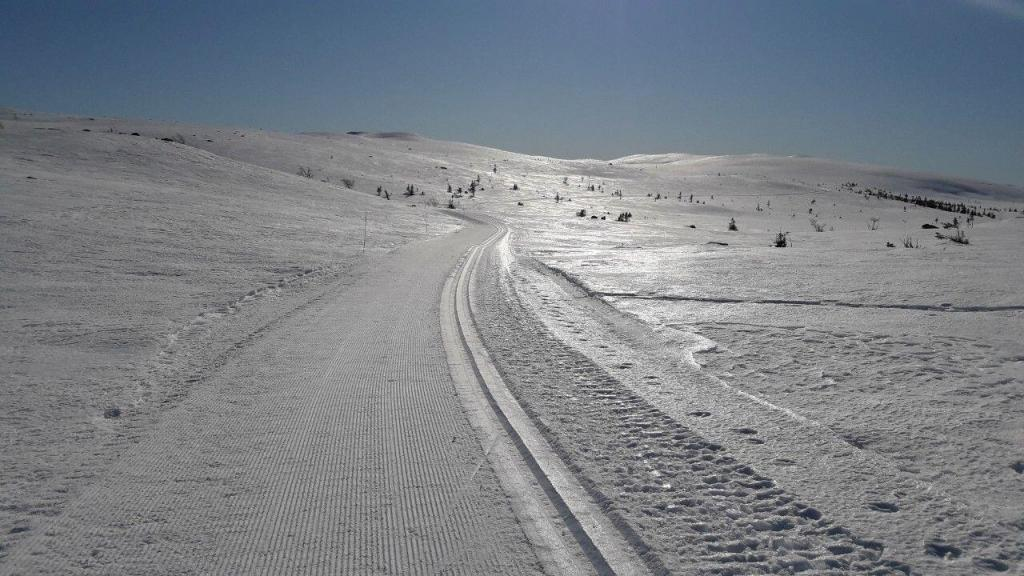 Løyper i Hedalsfjella