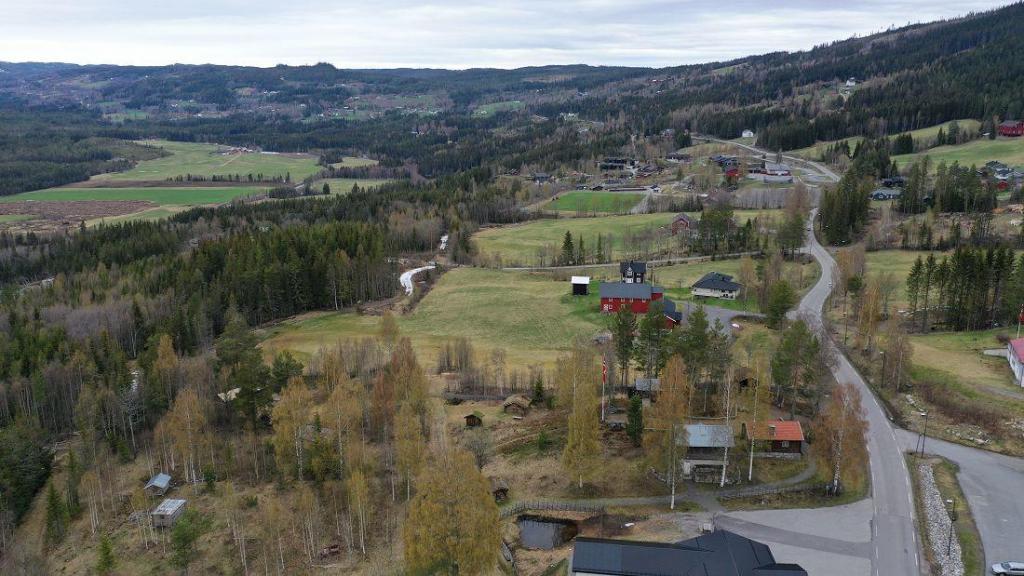 Utsikt nordover bygda fra Bautahaugen 17. mai 2021. Foto: Helge Nordby
