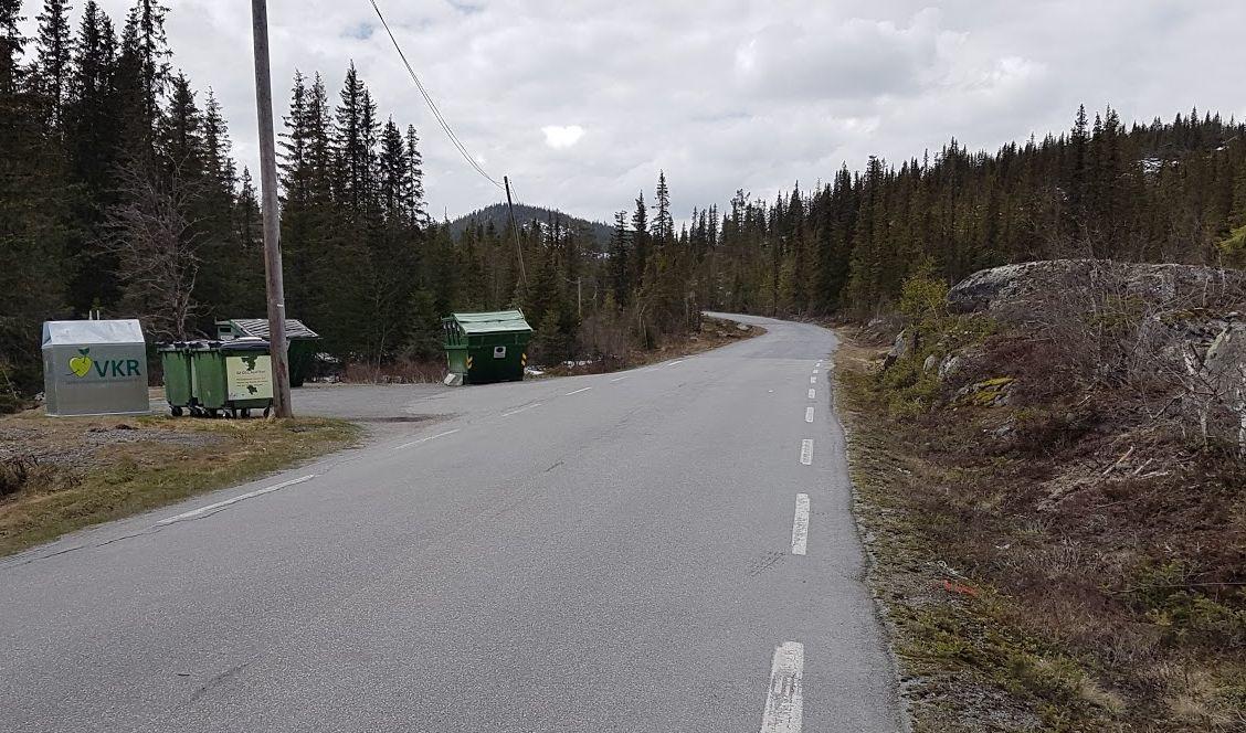 Veg nord i Hedalen