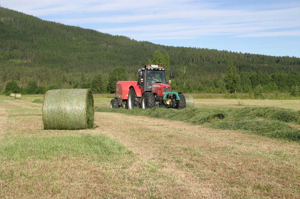 Aktivt landbruk