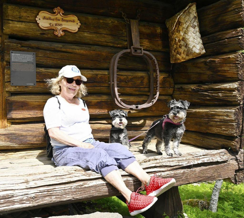 Bjørnesaksa på stabburet. Foto: Arne G. Perlestenbakken