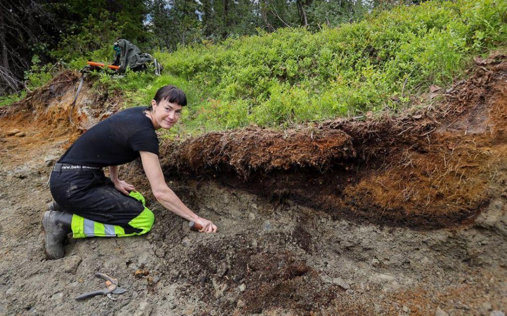 Arkeologisk utgraving av kullgrop på Teinvassåsen