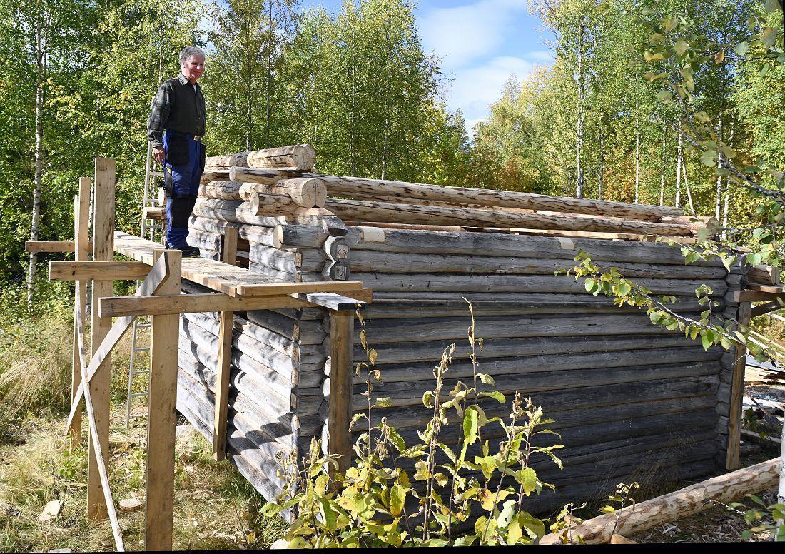 Skogskoie fra Vassfaret. Foto: Arne G. Perlestenbakken
